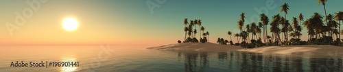 panorama of a tropical beach with palm trees,