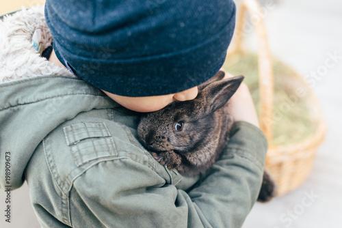 dziecko trzyma ciemnoszarego królika w dłoniach