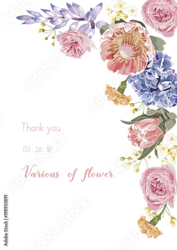 Wall mural Vector floral banner, greeting card with various flower,  invitation set