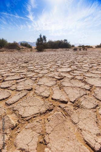 Foto Murales Dry cracked soil. Wadi Araba desert. Jordan landscape