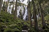 Wasserfall taut auf