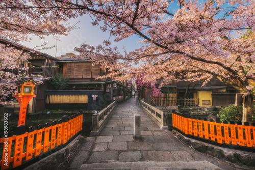Fotobehang Kyoto 京都 - 祇園白川