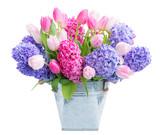 Hyacinth fresh flowers