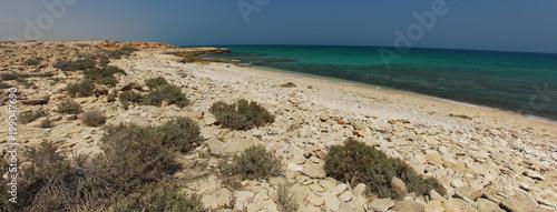 Plage près de Mascate, Oman - 199047690