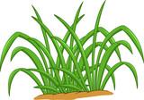 funny grass leaf cartoon