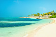 Beautiful paradise beach with tall palm trees and blue sky - 199086482