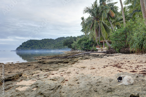 Keuken foto achterwand Tropical strand Beautiful El Nido landscape, Palawan, Philippines