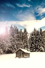 baita di legno nel bosco innevato