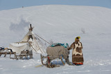 Nenets woman in a long fur coat made of reindeer skins (malice) goes to the choom - 199138499
