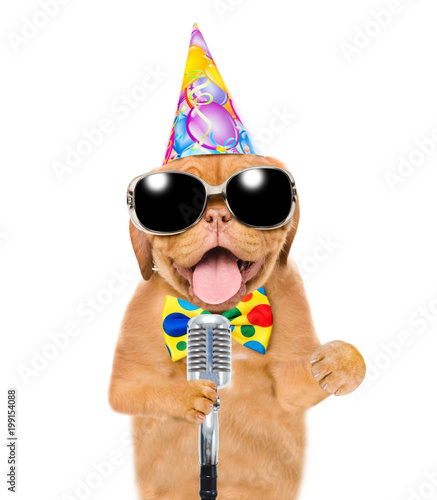 Dog in party hat ad sunglasses holding retro microphone. Isolated on white background - 199154088