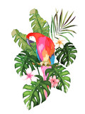 Exotic summer print with parrot  and tropical leaves. Isolated vector illustration on white background - 199155204