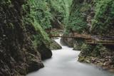 Vintgar Gorge, Slovenia. Beautiful canyon. Long exposure photography.