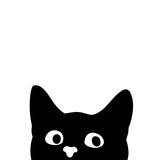 Curious cat. Sticker on a car or a refrigerator - 199162854