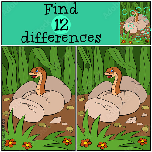 Fotobehang Zoo Educational game: Find differences. Baby viper in the egg.