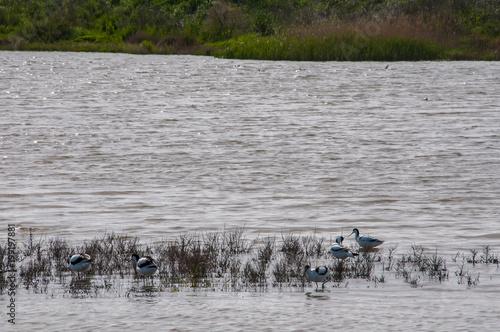 Aluminium Rio de Janeiro Um rio é um curso de água natural