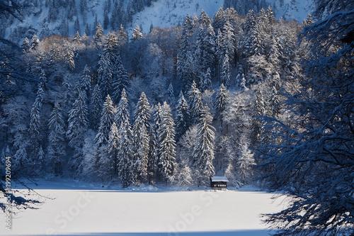 Foto op Aluminium Bergen Zugefrorener Bergsee