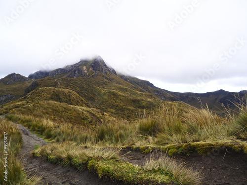 Aluminium Wit Camino de tierra que nos lleva a la montaña