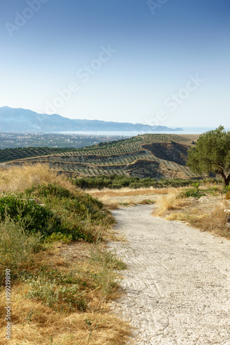 Foto op Canvas Beige Agricultural field in Crete, Greece