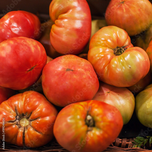 Fresh tomatoes  background. Organic Ripe red tomatoes in market. Harvesting concept. - 199248630