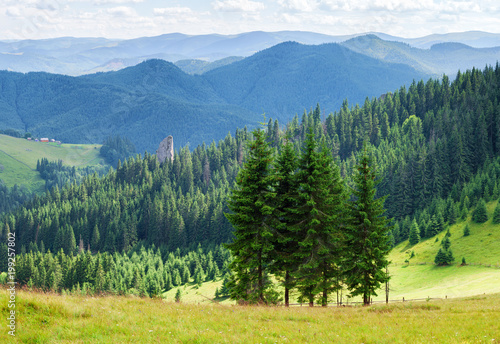 Summer panorama landscape of wooded mountains.