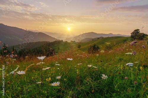 Fotobehang Bleke violet Mountains landscape at summer sunrise.