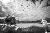 Antique statue on bridge Alexandre III, the river Seine and the Eiffel tower, Paris, France, black and white photography