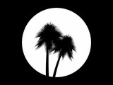 Two palm trees on the background of the full moon, black and white logo. Tropical trees. Vector illustration