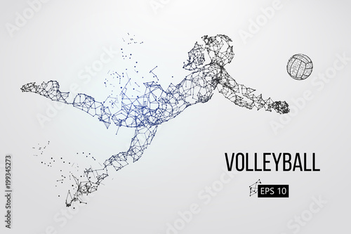 Fototapeta Silhouette of volleyball player. Vector illustration.