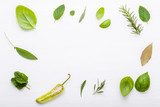 Various fresh herbs for cooking ingrediens peppermint , sweet basil ,rosemary,oregano, sage and lemon thyme on white wooden background with flat lay and copy space. - 199401293