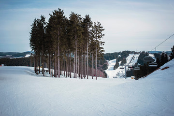 Group of pine trees on ski slope under blue cloudy sky. Winterberg, Germany.