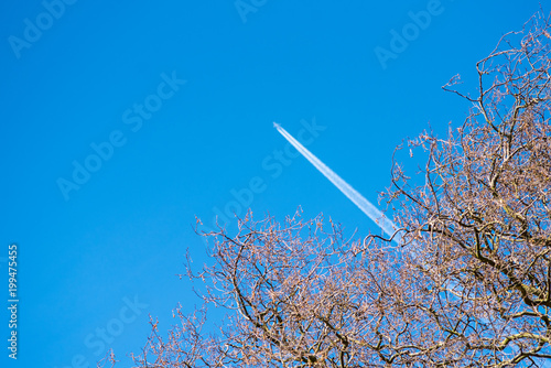 distant aircraft seen through bare trees Poster
