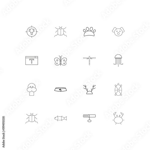 Fototapeta Animals simple linear icons set. Outlined vector icons