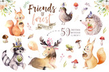 Cute watercolor bohemian baby cartoon hedgehog, squirrel and moose animal for nursary, woodland isolated forest illustration for children. Bunnies animals. - 199500883