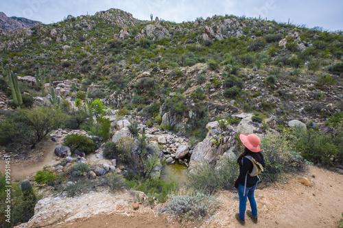 Foto Spatwand Arizona Hispanic woman hiking on a mountain trail near Tucson, Arizona.