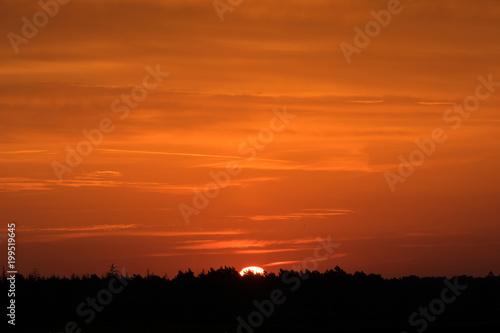 Fotobehang Baksteen Sonnenaufgang über dem Wald an einem Tag im Herbst