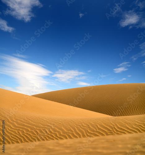 landscape in evening desert - 199522084