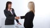 Business handshake. Two business women shake hands with each other to sign a successful deal - 199559260