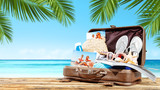 summer suitcase and beach background  - 199585604