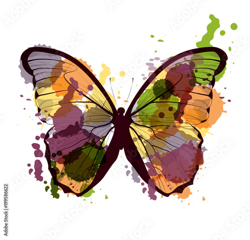 Foto op Aluminium Vlinders in Grunge art sketched colorful butterfly symbol in vector