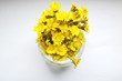 bouquet of yellow flowers in a vase on a white background, beautiful spring composition