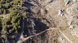 un paysage de montagne détruit par des chenilles processionnaires  - 199630844