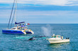 Humpback Whale between two small ships Provincetown, Cape Cod, Massachusetts, US