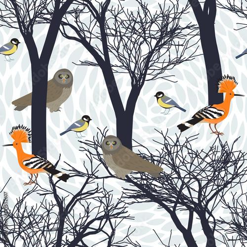 Keuken foto achterwand Uilen cartoon Seamless pattern with birds, owl, hoopooe, titmouse and silhouettes of trees. Endless texture. Graphic wallpaper design.