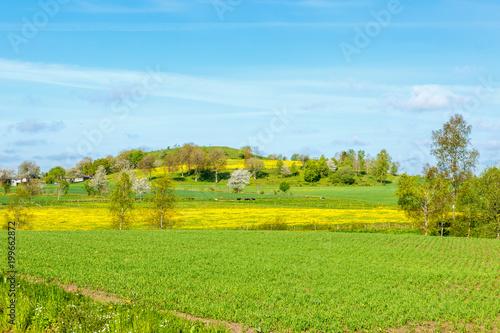 Foto op Plexiglas Pool Rural landscape with fields and a hill