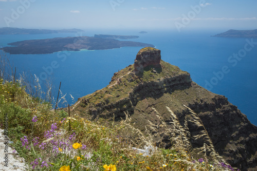 Greece Landscape on the island of Santorini with volcanic rock formation and spring flowers in the foreground.