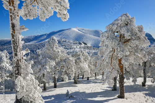Foto op Aluminium Madrid Snow in the mountains of Madrid (Spain)