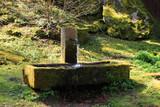 alter brunnen aus stein im kurpark von bad wildbad - 199672443