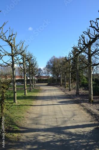 Foto Murales Parc de la Balinière