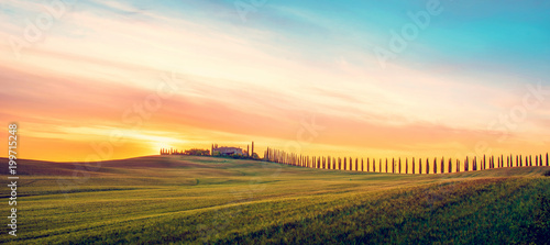 Keuken foto achterwand Toscane Beautiful magical landscape with a field and a line of cypress in Tuscany, Italy at sunrise