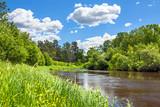 rural summer landscape with forest, river, blue sky